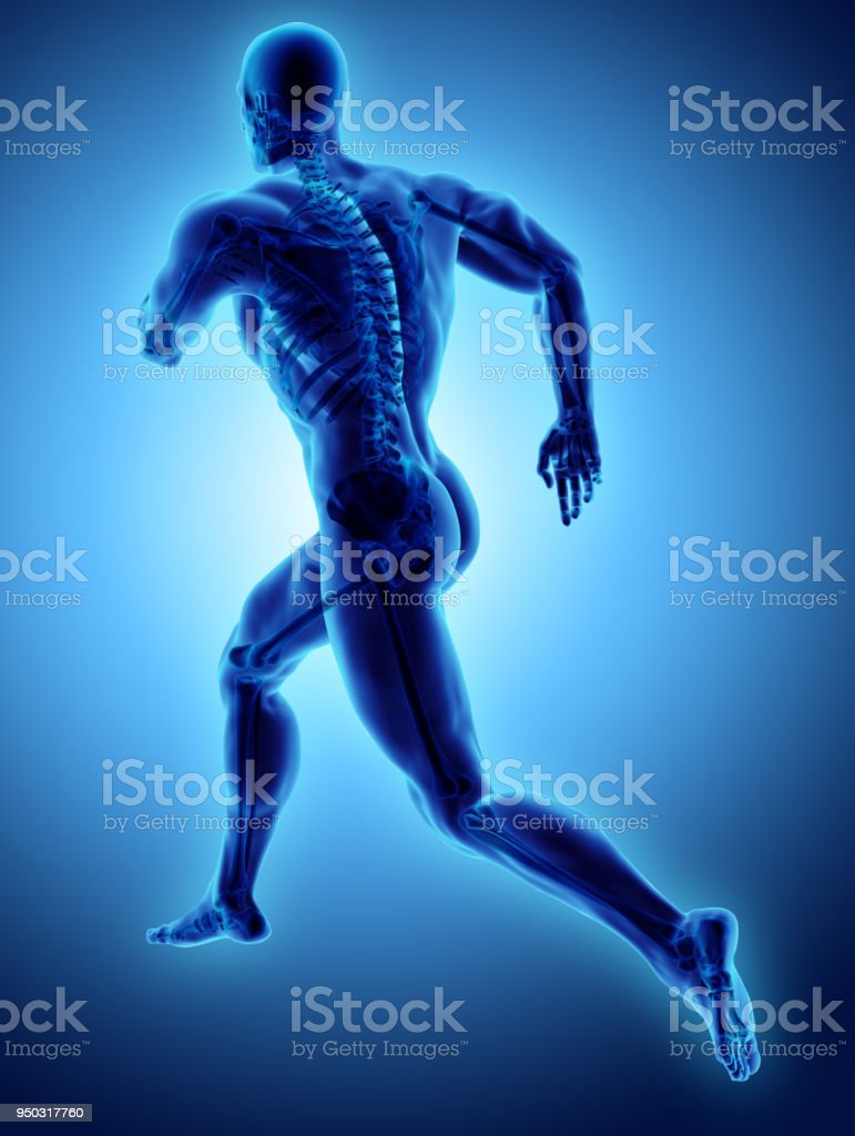3d illustration male running pose with x-ray skeleton joint, medical concept. stock photo