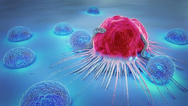 3d abbildung einer krebszelle und lymphozyten - krebs tumor stock-fotos und bilder