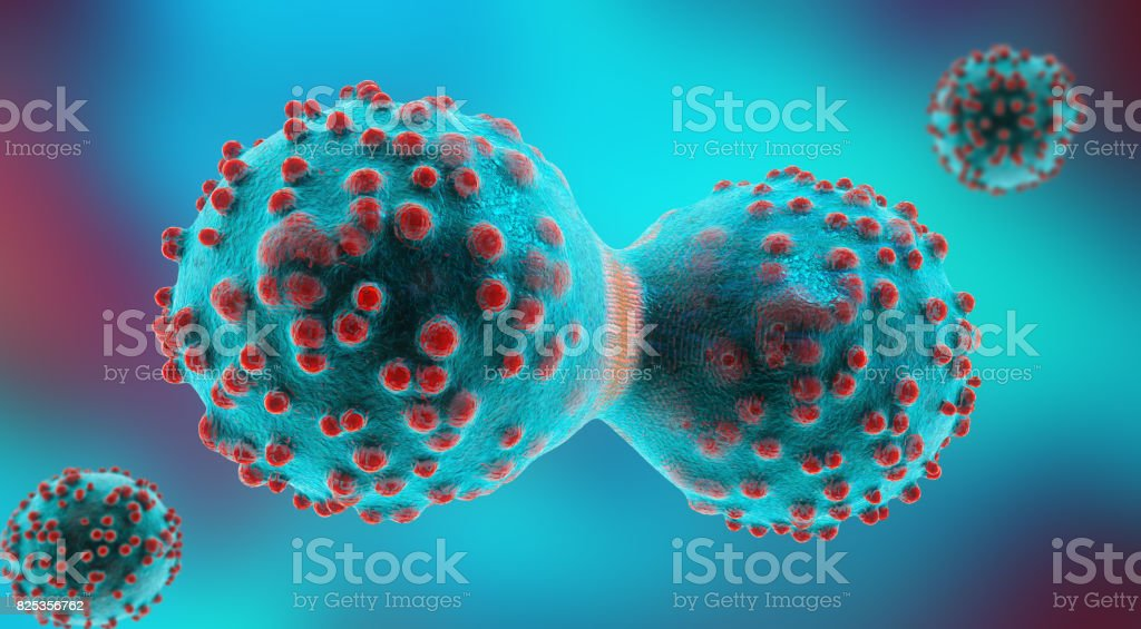 3d illustration of a cancer cell in the process of mitosis stock photo