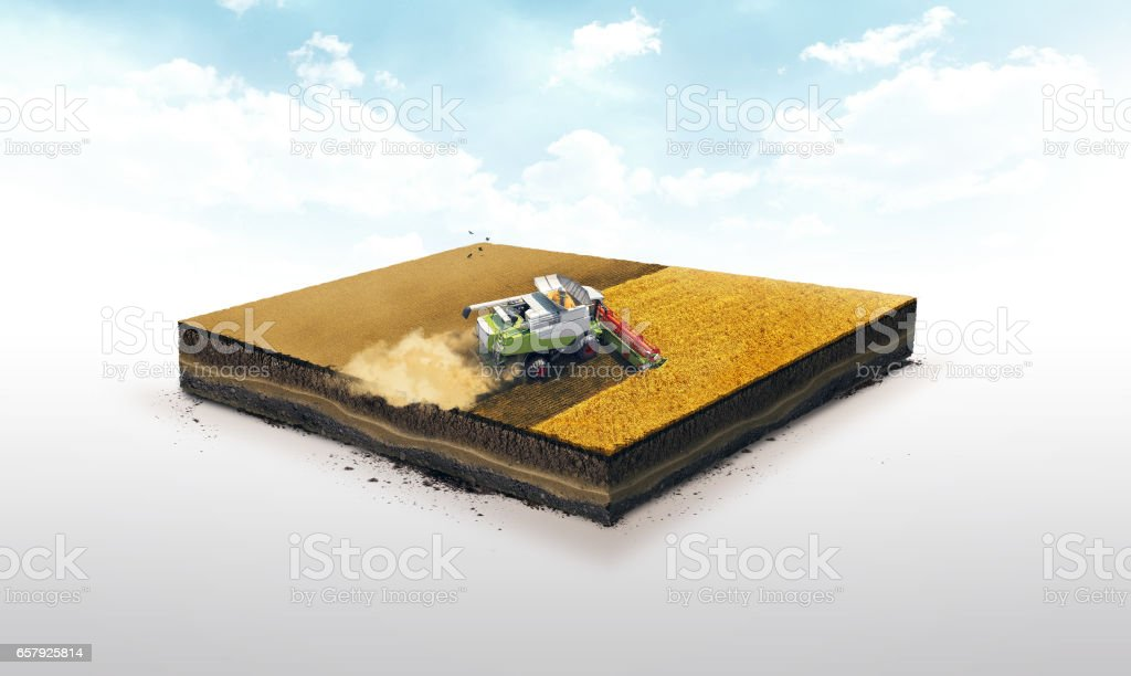 3d illustration of a soil slice, combine wheat harvesting on wheat field isolated on white background stock photo