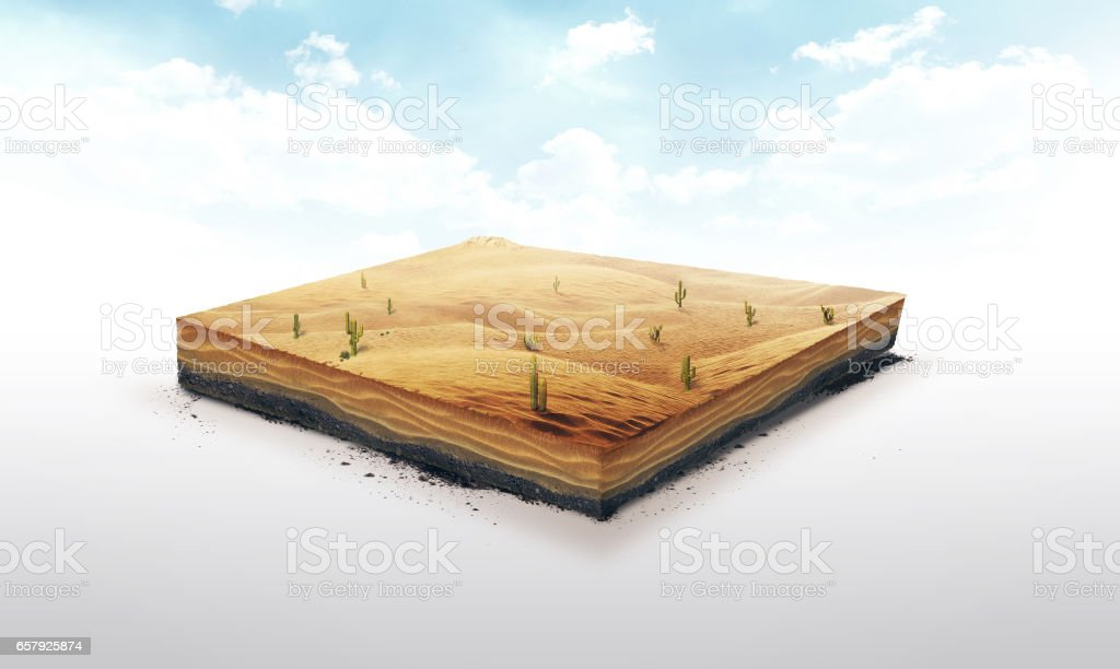 3d illustration of a soil slice, Desert with cacti, sand, dune isolated on white background stock photo