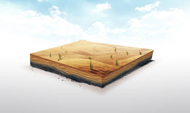 3d ilustración de una porción de suelo, desierto con cactus, arena, dunas aisladas sobre fondo blanco - pedazos de tierra fotografías e imágenes de stock