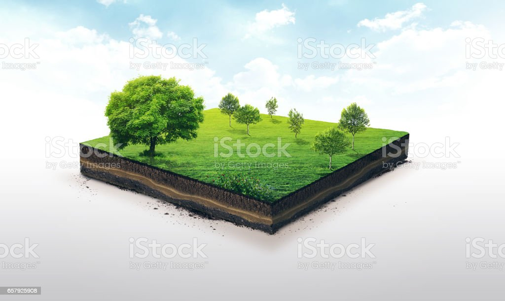 3D Abbildung einer Boden Slice, grüne Wiese mit Bäumen, isoliert auf weiss – Foto