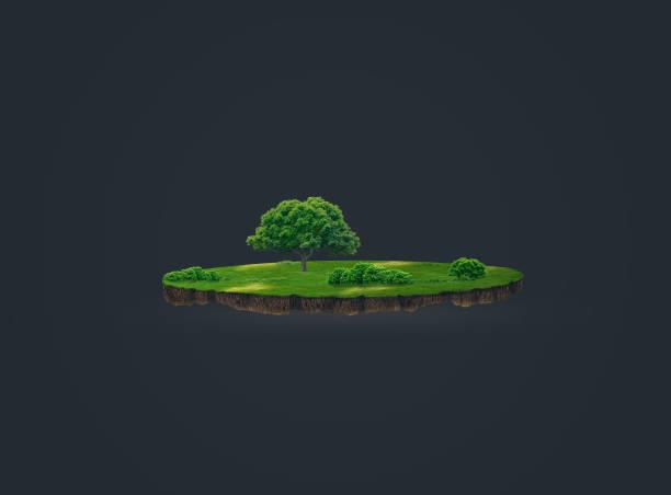 3d abbildung einer boden slice, grüne wiese mit bäumen, die auf dunklem hintergrund isoliert - gartenillustration stock-fotos und bilder