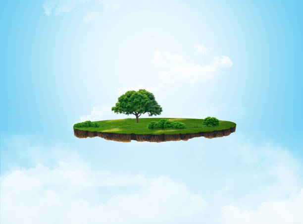 ilustración 3d de un prado de rebanada, verde de tierra con árboles aislados sobre fondo claro - pedazos de tierra fotografías e imágenes de stock