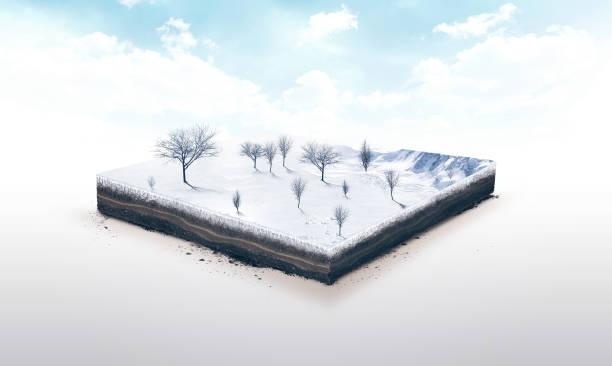 3d ilustración de una porción de suelo, naturaleza, invierno con árboles aislados sobre fondo blanco - pedazos de tierra fotografías e imágenes de stock