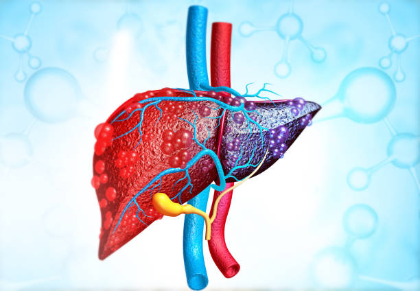 3d illustration of Abstract medical background with Diseased liver stock photo