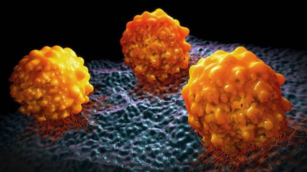 3d abbildung von krebszellen - melanom stock-fotos und bilder