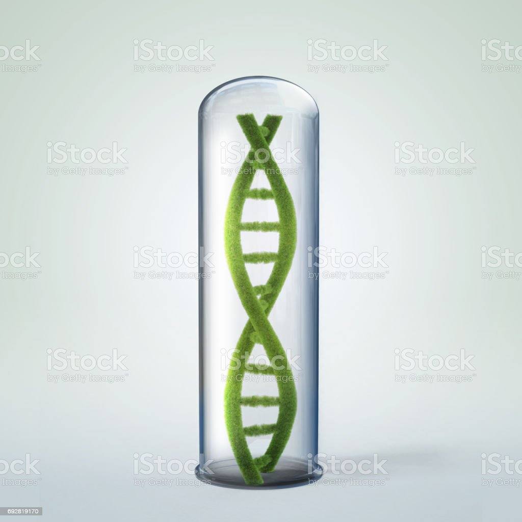 3d illustration of DNA helix in test tube. stock photo
