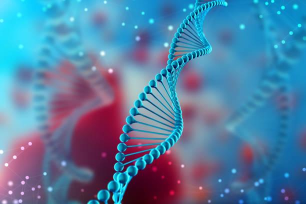 molécula de ilustración del adn 3d. la molécula helicoidal azul de un nucleótido en el organismo. genoma y modificación - adn fotografías e imágenes de stock