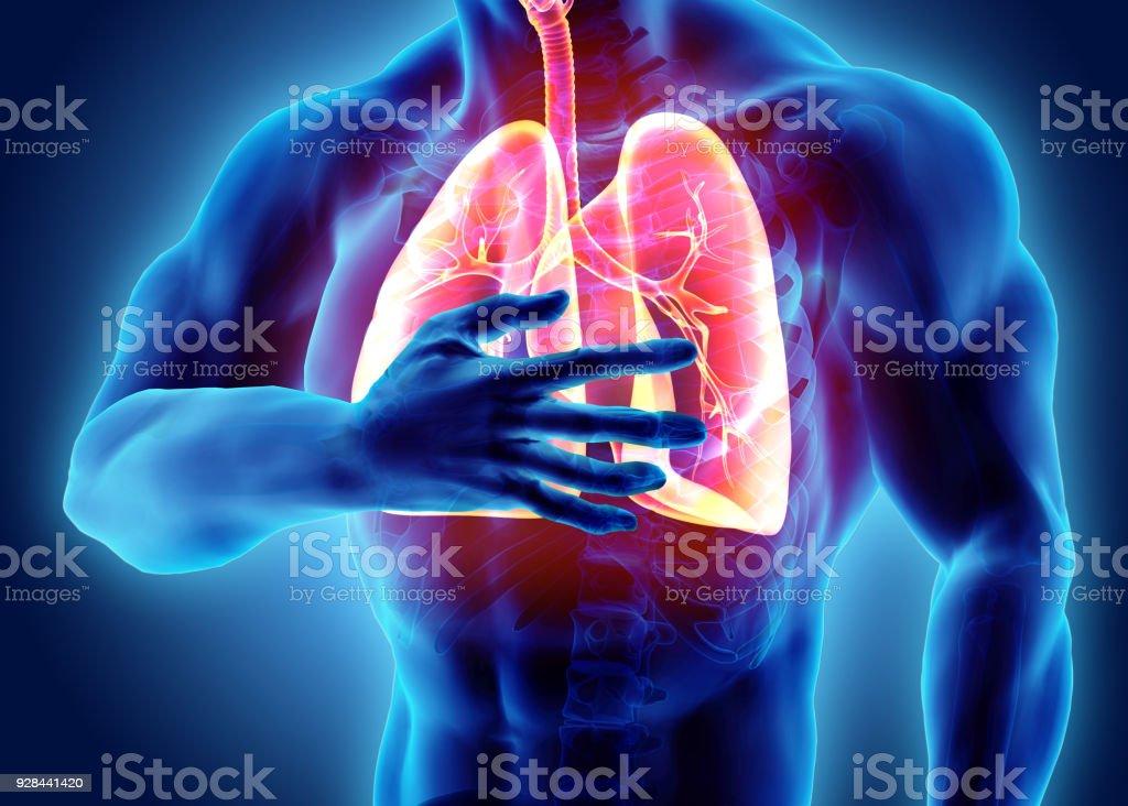 3D Darstellung der Lunge und Brust schmerzhaft, medizinische Gesundheitsversorgung. – Foto