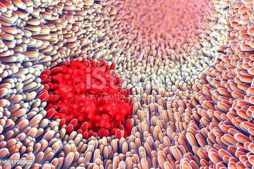 istock 3d illustration of microscopic closeup of intestine villus and s 864198560