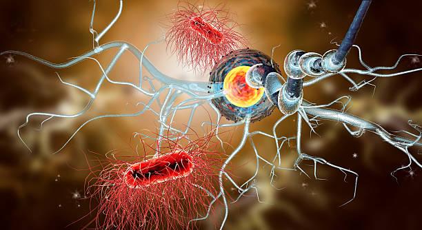 3 d illustration der Axon Zellen, Viren – Foto