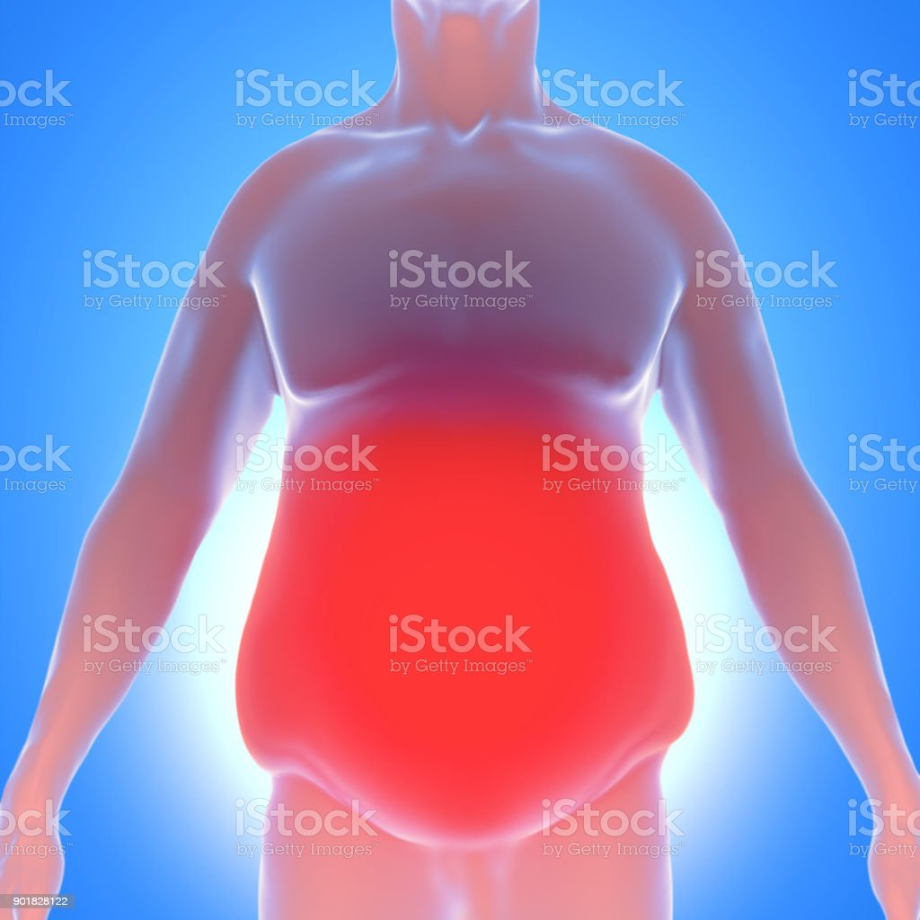 3d Illustration Of Obesity A Overweight Man With Belly Fat Stock