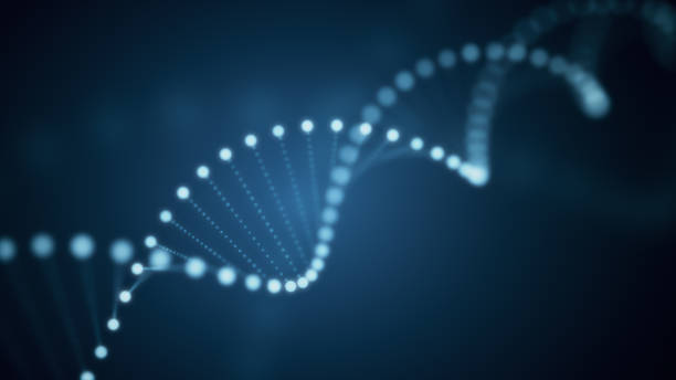 3d illustration of rotating dna glowing molecule on blue background - dna foto e immagini stock