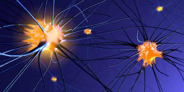 3d illustration of transmitting synapse,neuron or nerve cell stock photo