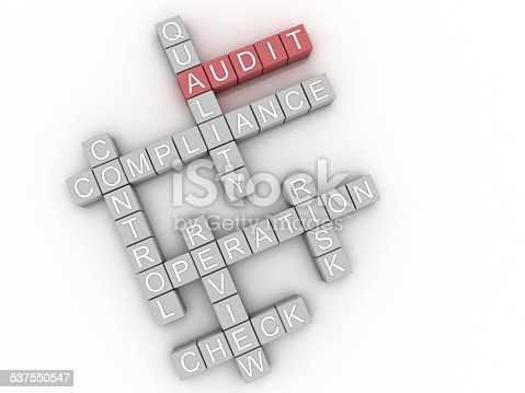 istock 3d image Audit issues concept word cloud background 537550547