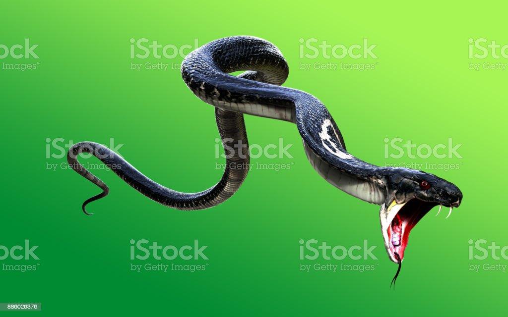 3d king cobra black snake picture id886026376