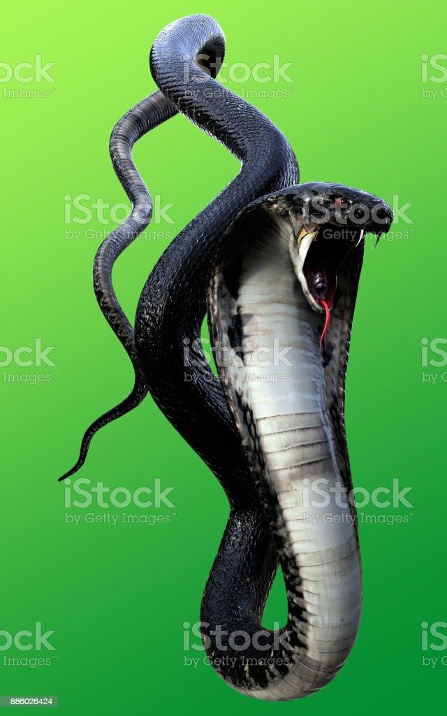 3d king cobra black snake picture id886026424