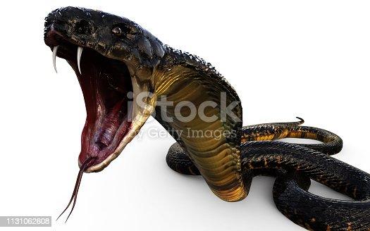 istock 3d King Cobra Snake Attack 1131062608