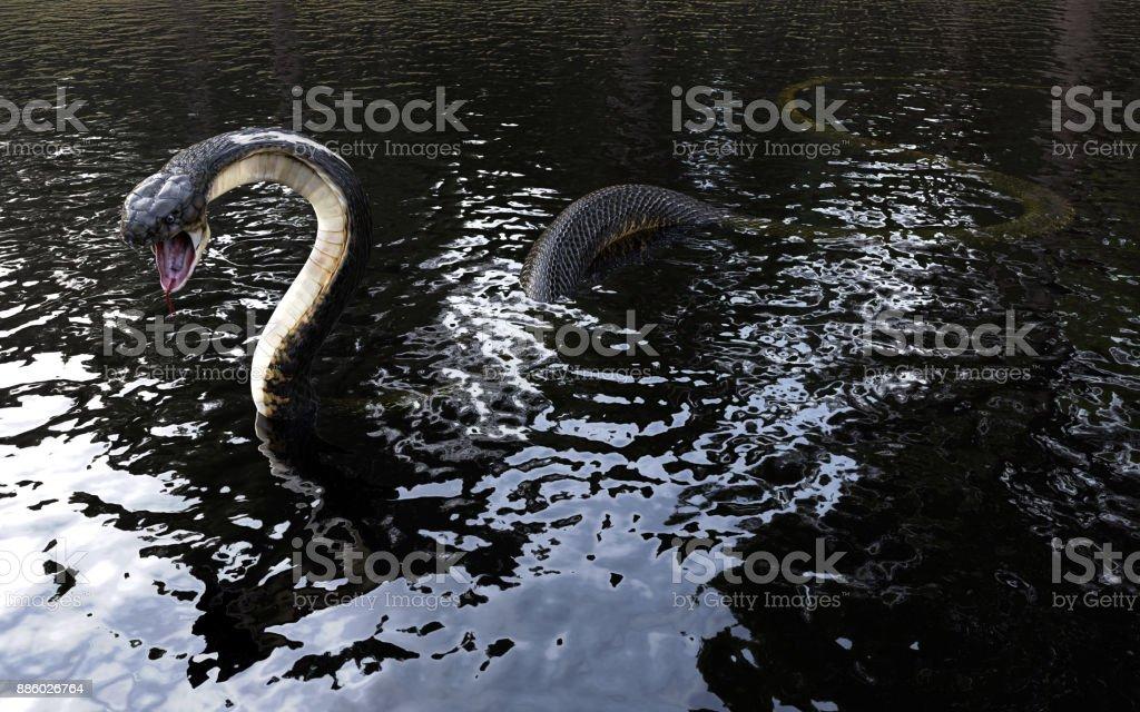 3d King cobra snake on water stock photo