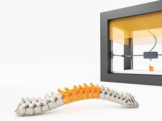 3d printed spine stock photo