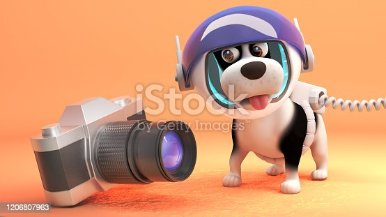 istock 3d puppy dog in a spacesuit on Mars looking at a camera, 3d illustration 1206807963