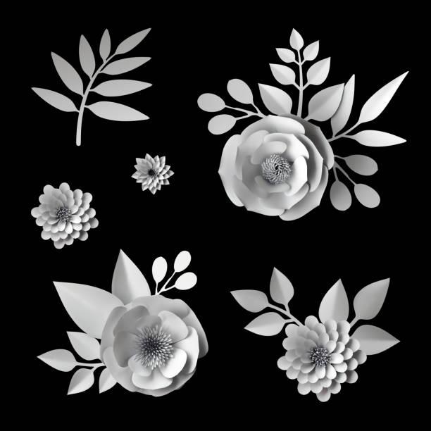 3d render, digitale illustration, weiße papierblumen, design-elemente-sammlung, clip art satz isoliert auf schwarzem hintergrund - bücherbund stock-fotos und bilder