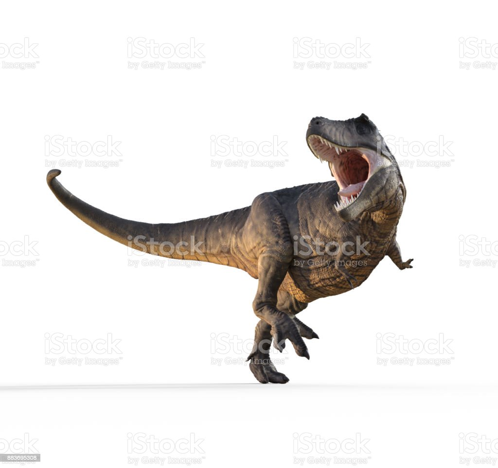 3d render dinosaur - trex white on white background. stock photo