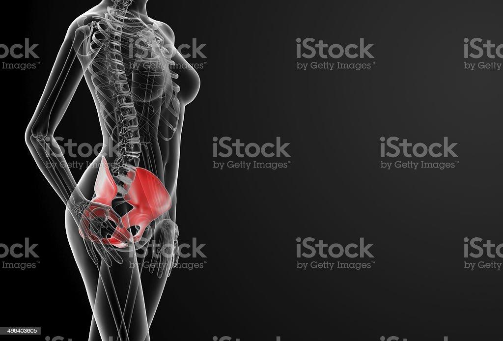 Bone me sex galleries 3