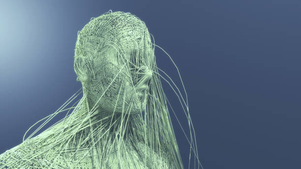 3d render Human figure made with lines stock photo