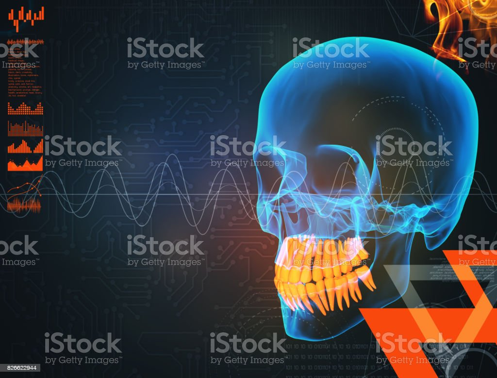 3d Render Human X Ray Skull On Black Background Stock Photo - Download  Image Now