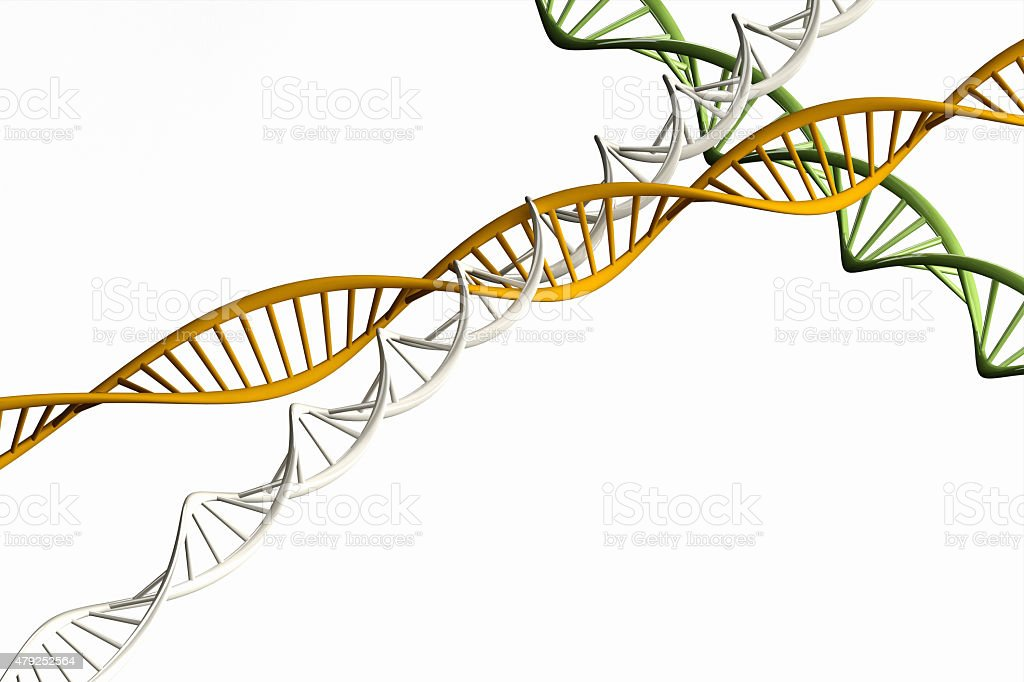 3d render ,Model of twisted DNA chain isolated. stock photo