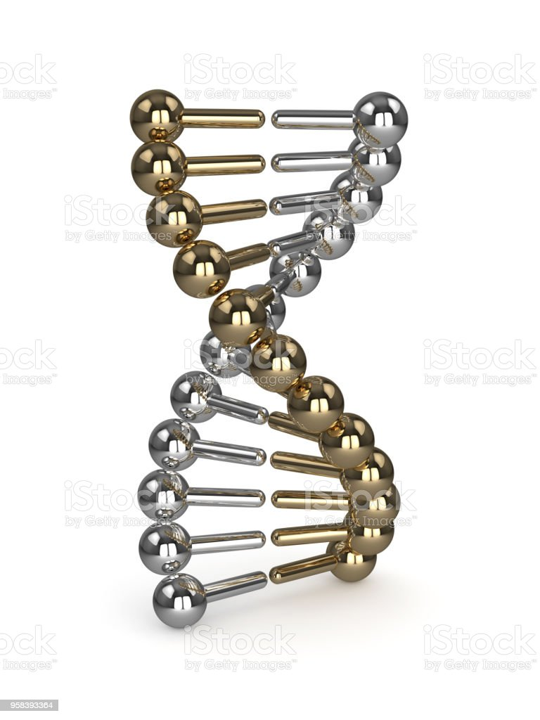 3d render of DNA chain over white stock photo