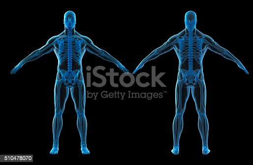 istock 3d render of human body and skeleton 510478070