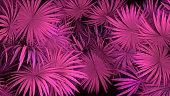 3d render of neon palm leaves on black background. Banner design. Retrowave, synthwave, vaporwave illustration. Party and sales concept