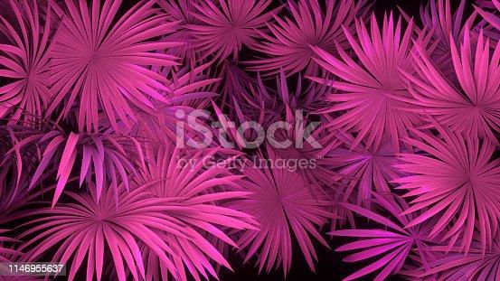 istock 3d render of neon palm leaves on black background. Banner design. Retrowave, synthwave, vaporwave illustration. 1146955637