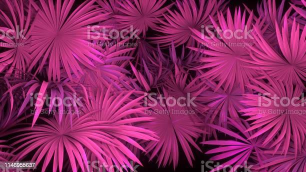 Photo of 3d render of neon palm leaves on black background. Banner design. Retrowave, synthwave, vaporwave illustration.