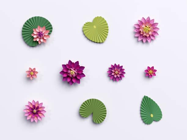 3d render, papier lotusblumen, grüne blätter, rosa seerose, design-elemente isoliert auf weißem hintergrund - lotus zeichnung stock-fotos und bilder