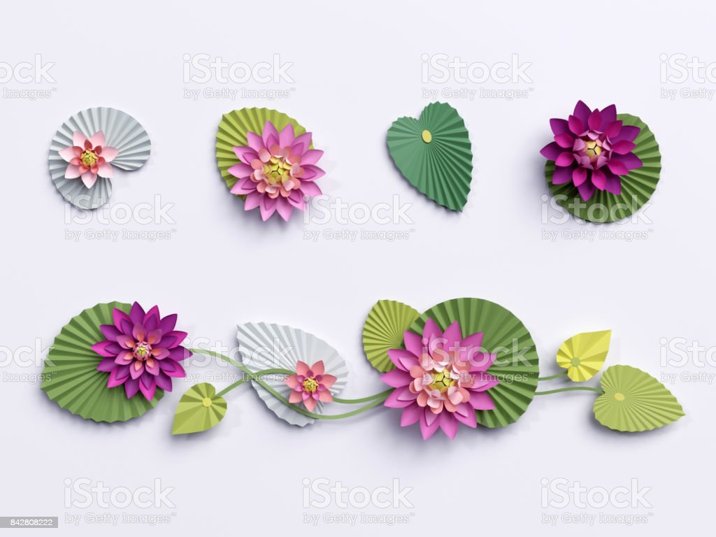 3d Render Paper Lotus Flowers Wall Decoration Border Pink Water Lily