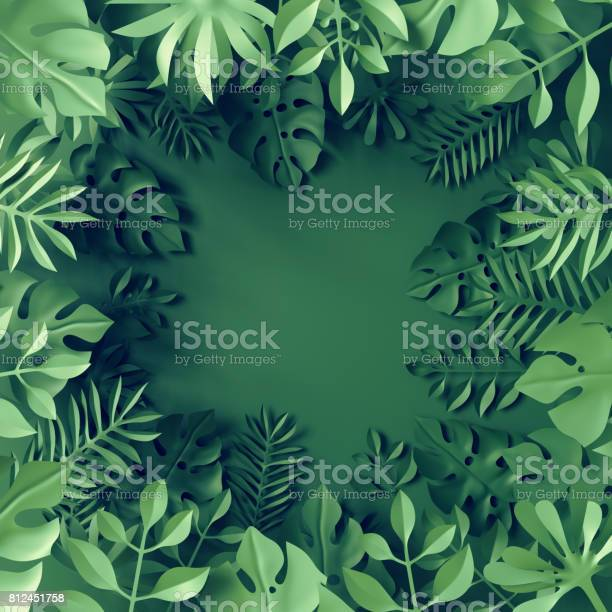 3d render tropical paper leaves blue scene background jungle frame picture id812451758?b=1&k=6&m=812451758&s=612x612&h=n65iwukuz2vztt6lje4q5wlgz2awxt6nv fm bnytcs=