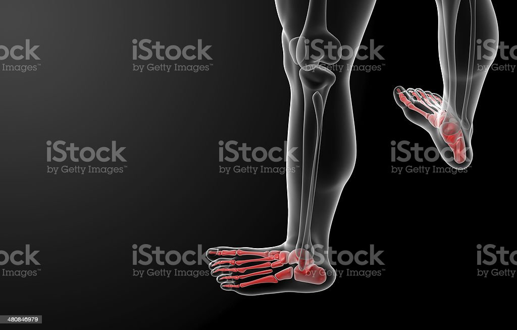 3d render x-ray of foot royalty-free stock photo