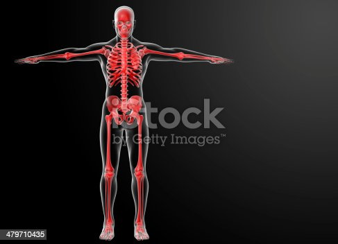 496193187istockphoto 3d rendered red skeleton - front view 479710435