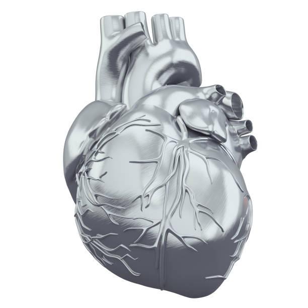 3D-Render-Darstellung des Herzens – Foto