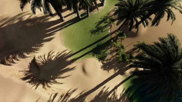 rendu 3D - Oasis dans le désert - Photo