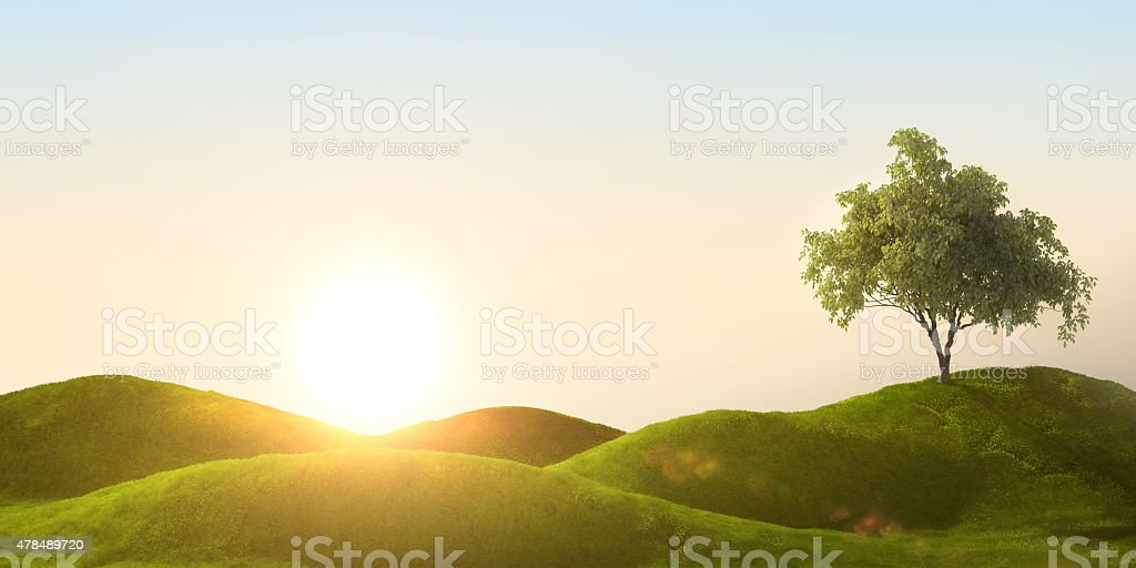 3d rendering of a green field stock photo