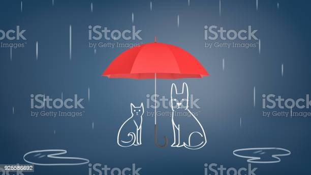 3d rendering of a open red umbrella covering chalk drawn cat and dog picture id925586692?b=1&k=6&m=925586692&s=612x612&h=0cukslkfl7uxgmjpmqew8txzqbrjgyodoqt 28c jt8=