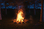 3d rendering of big bonfire with sparks at forest in the night