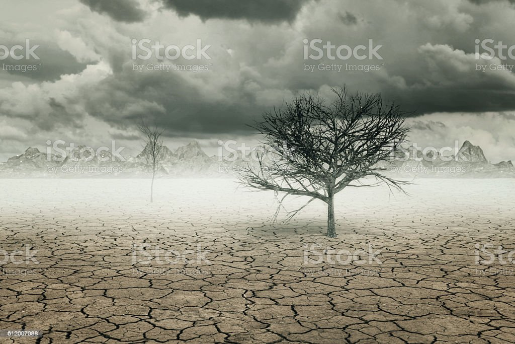 3d rendering of dry soil landscape with trees and clouds stock photo