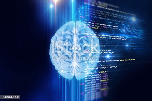 611992272 istock photo 3d rendering of human  brain on programming language background 613330906